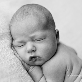 VGP_Toowoomba Newborn Photographer _087